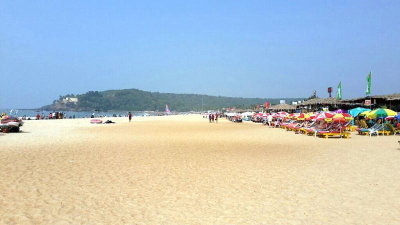 Baga Beach Goa Hotels